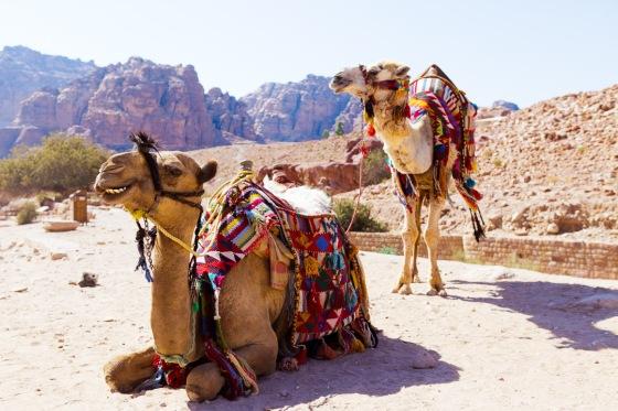 petra, gustavo dragunskis, deserto, desert, jordan, jordânia